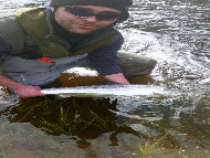 Mr Jamie McCulloch - River Spey