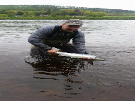 Mr Paul MacIntyre - River Tay
